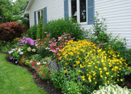 ​Tips For A Successful Perennial Garden
