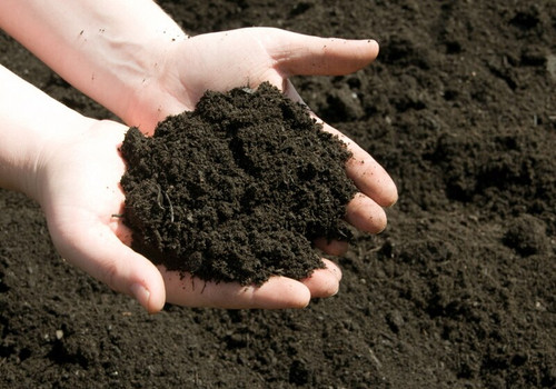 Fast Grow Planting Soil enhance plant and tree growth up to 40% faster.