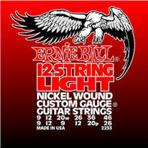 Ernie Ball 12 String Light #2233