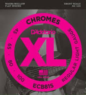 DAddario Short Scale Flat Wound Chrome Bass Strings ECB81S