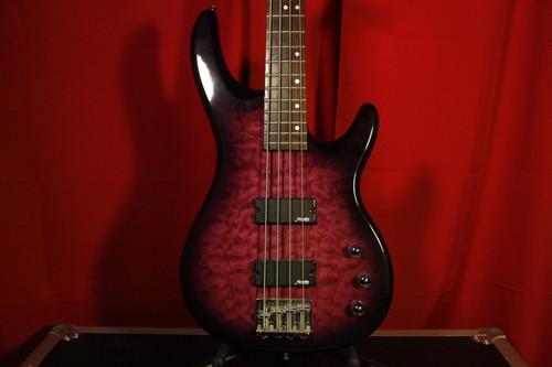 Alvarez Bass w/ Gig Bag (Used)