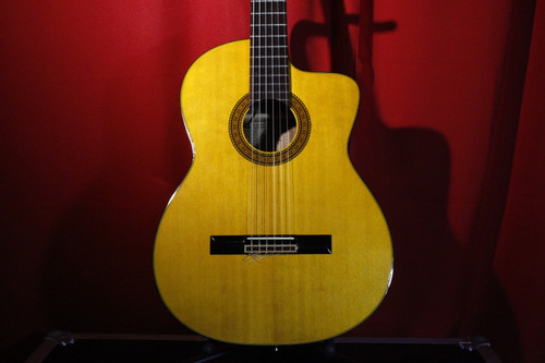 Takamine EC132C Pro Series (Made in Japan) w/ Case (Used)