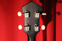 Recording King ROST-7-TS Tenor Guitar (Used)