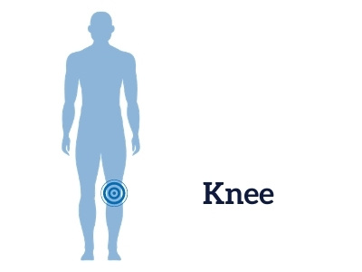 kneeillustration.jpg