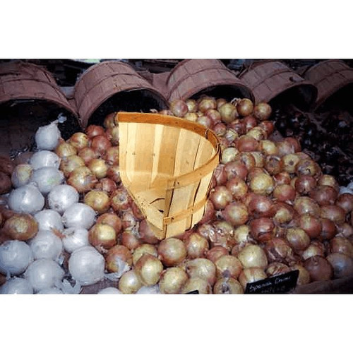 Wood Basket, HALF-CUT