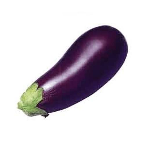 Eggplant Replica Small
