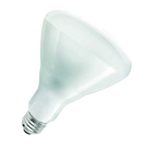 UPDATE HTLP-BULB(W) 250 Watt Heat Lamp Bulb, White