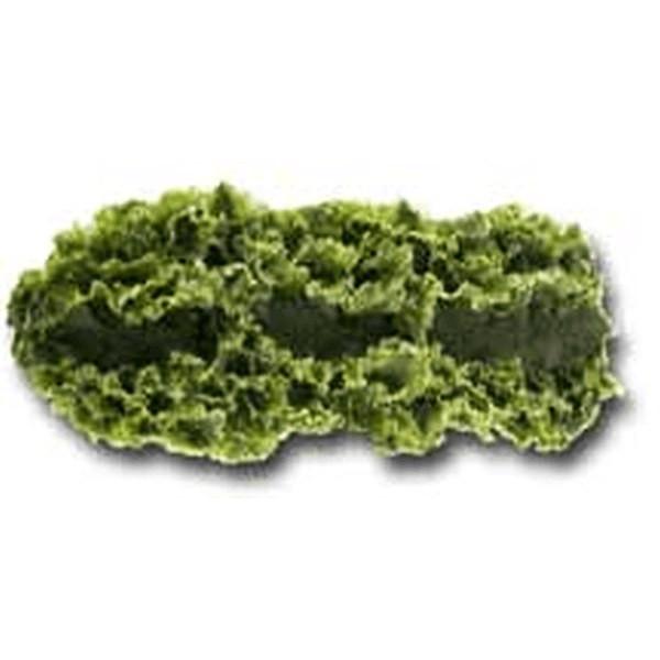 """Kale Runner 12"""""""