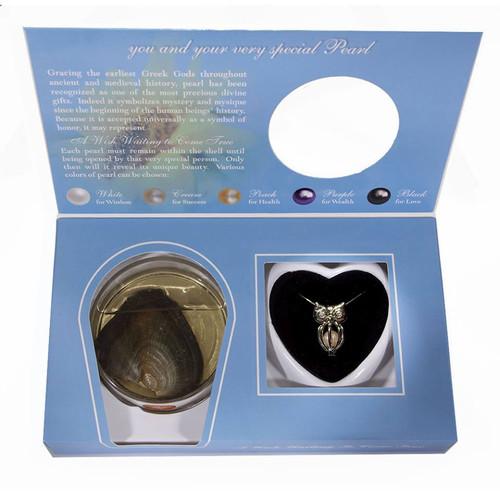 Owl pendant in box set