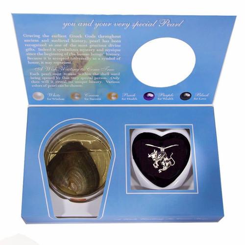 taurus pendant in box set