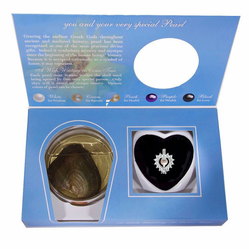 Heart pendant with cz stones gift set