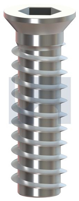 M6 STAINLESS 316 TIMBER INSERT COUNTERSUNK HEX HAND