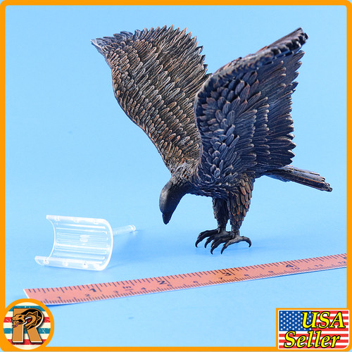 Qin Army Zhao Kuang - Large Eagle Bird - 1/6 Scale -