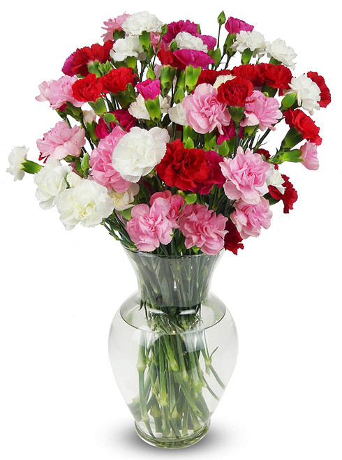 "Fresh Flowers  ""Majestic"""