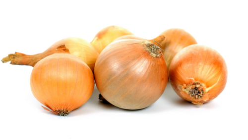 Yellow Onions ORG (LB)