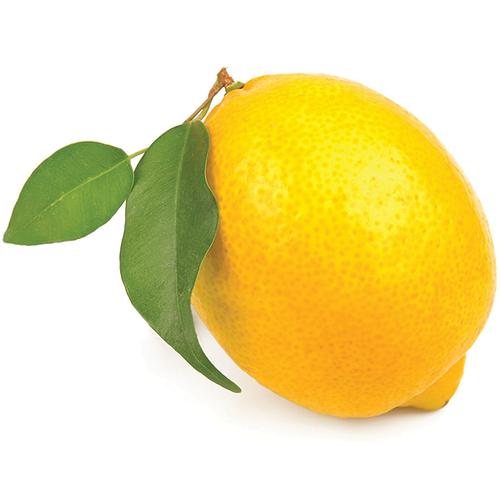 Lemons CONV (EA)
