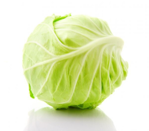 Cabbage ORG (LB)