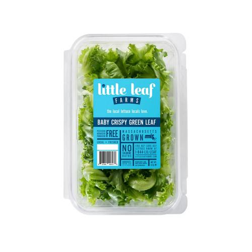 Crispy Green Leaf Lettuce, 8oz