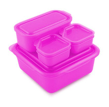 Goodbyn Portions On-the-Go - Pink