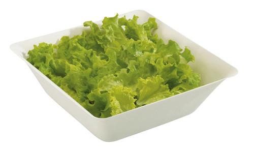 Sugarcane Pulp 84 oz Salad Bowl (Case of 80 pc)