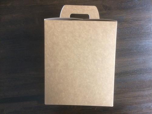 Solia City Lunch Box (Case of 100 pc)