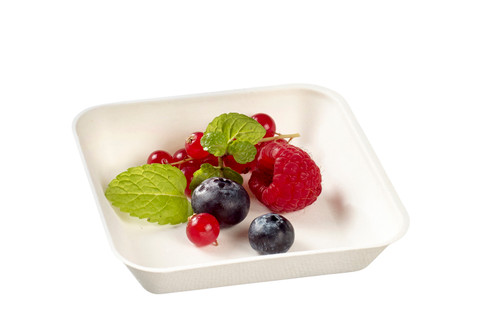 """Kanopee white sugarcane pulp plate 3.9""""x3.9""""x0.8"""" / 100x100x20mm - LID NOT INCLUDED - (Case of 600 pc)"""