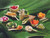 """Bamboo Leaf 5"""" Thermoformed Spoon (Case of 1000 pc)"""
