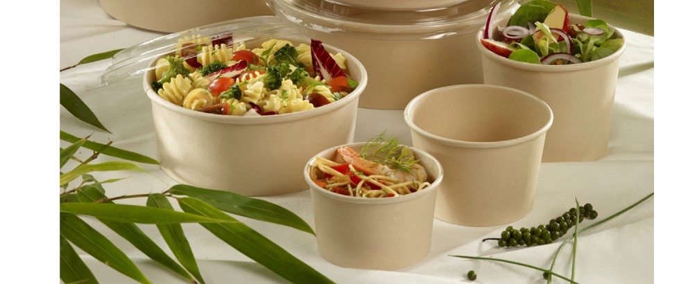 Disposable Catering Tableware, Plates, Cups, Dishes & Food