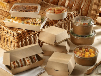 DISPOSABLE TAKEOUT PACKAGING BUYING GUIDE