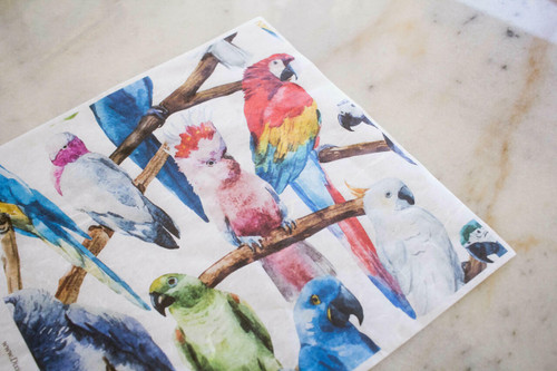 Belles and Whistles Birds - Rice Decoupage Paper