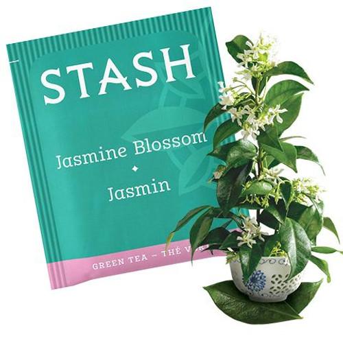 Stash Jasmine Blossom Green Tea Bags