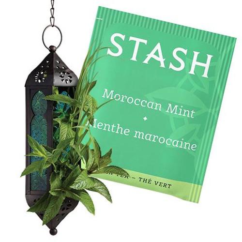 Stash Moroccan Mint Tea Bag