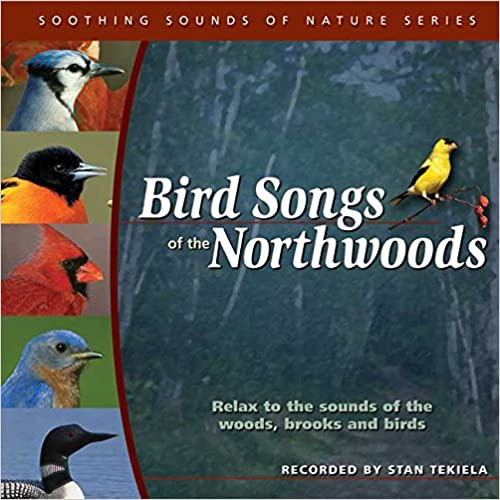 Bird Songs of the Northwoods