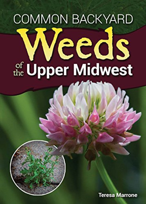 Weeds Of The Upper Midwest