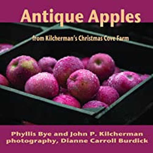 Antique Apples from Kilcherman's Christmas Cove Farm