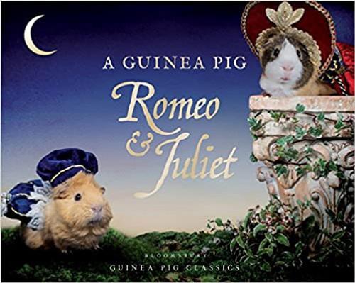 Guinea Pig Classic: Guinea Pig Romeo & Juliet