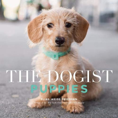 Dogist: Puppies