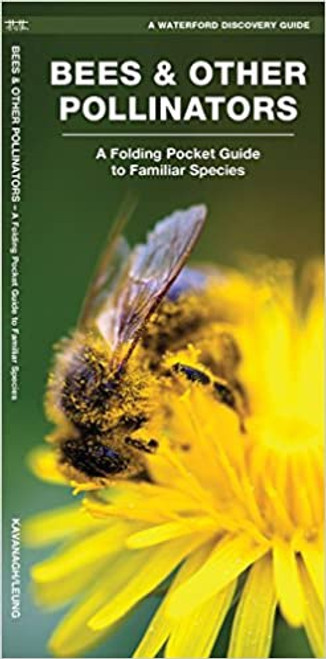 Bees & Other Pollinators: A Folding Pocket Guide to Familiar Species