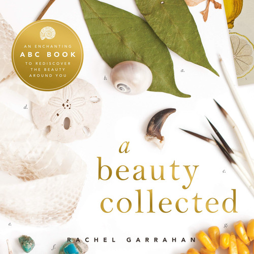 Beauty Collected: A Captivating ABC Book to Discover the Beauty Around You
