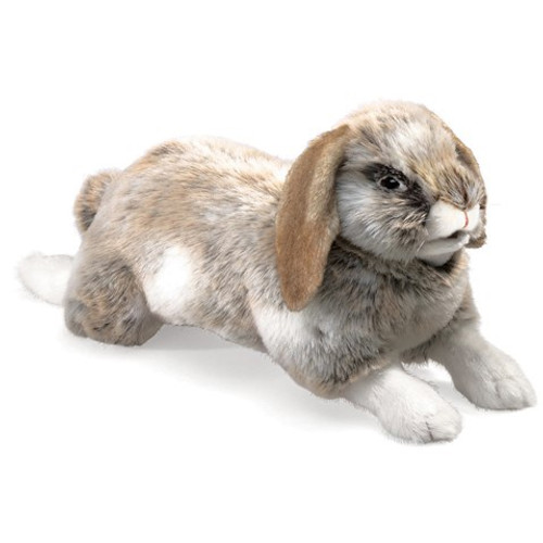 Folkmanis Puppet:  Holland Lop