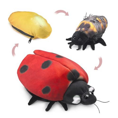 Folkmanis Puppet: Ladybug Life Cycle