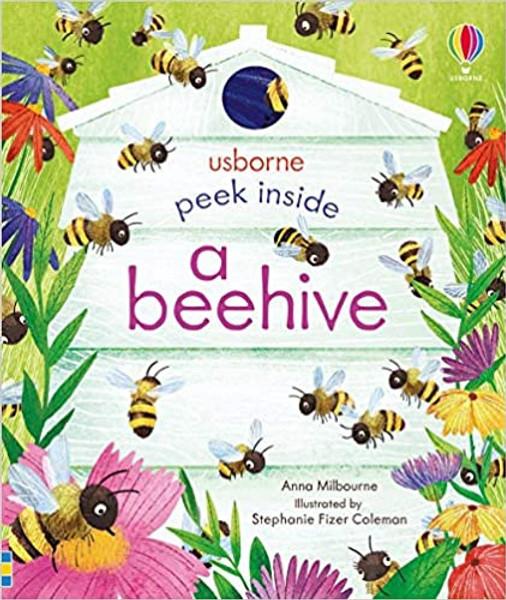 Peek Inside a Beehive