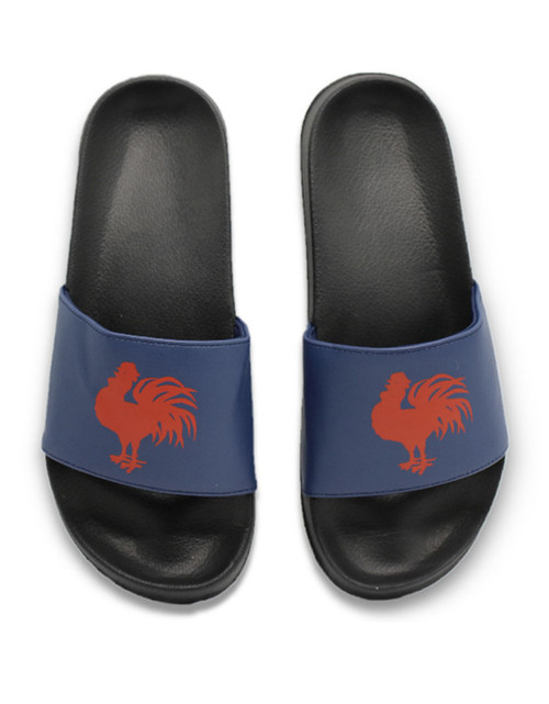 Sydney Roosters Team Kicks Slides