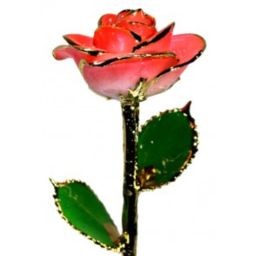 Two-Toned Bright Pink Rose Trimmed in 24kt Gold