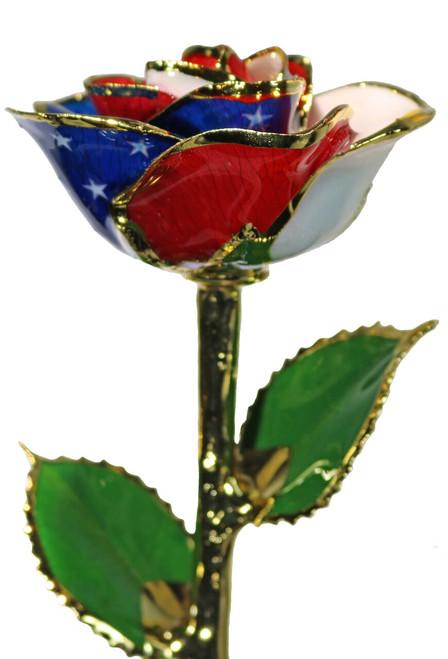 """Star Spangled""  American Flag Rose Trimmed in 24kt Gold"