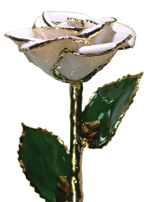 "NEW ""Glass Slipper"" White Sparkle Rose Trimmed in 24kt Gold"