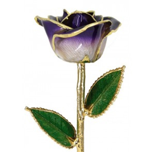 """Sugar Plum"" Purple & White Rose Trimmed in 24kt Gold"