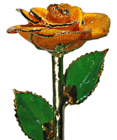 """Dreamsicle"" Orange Sparkle Rose Trimmed in 24kt Gold"