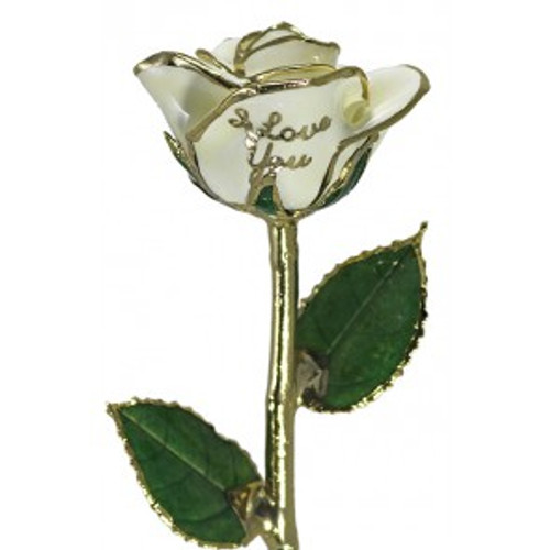"""NEW Snow White """"I Love You"""" Rose Trimmed in 24kt Gold"""