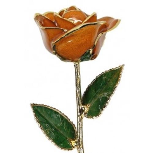"""""""Orange Blossom"""" Orange Rose Trimmed in 24kt Gold LG"""